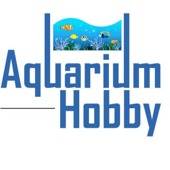 @aquariumhobby