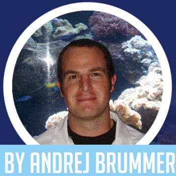 Andrej Brummer from Saltwater Aquarium Advice