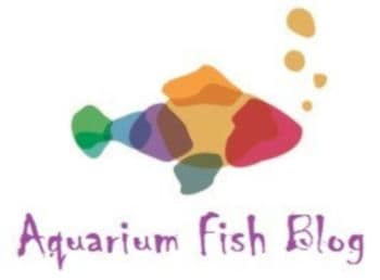Aquarium Fish Blog Logo