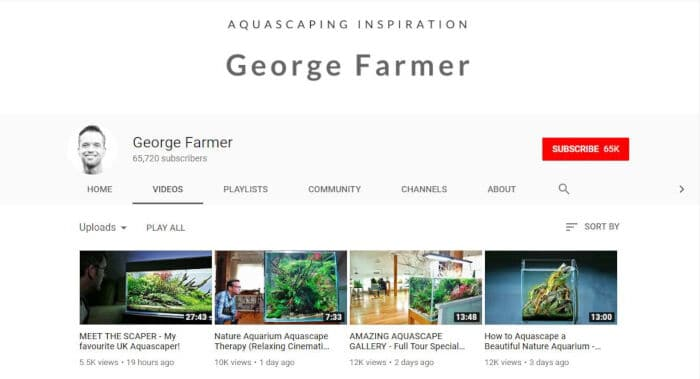 Aquascaping Inspiration by George Farmer