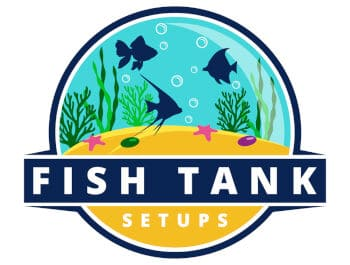 Fish Tank Setups Logo