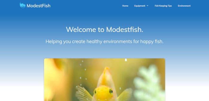 Modest Fish