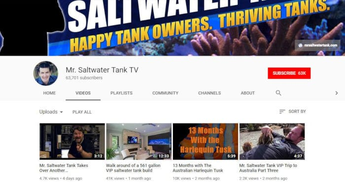 Mr. Saltwater Tank TV by Mark