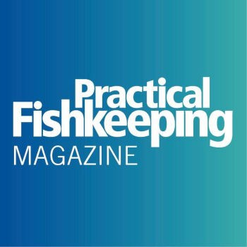 Practical Fishkeeping Magazine Logo