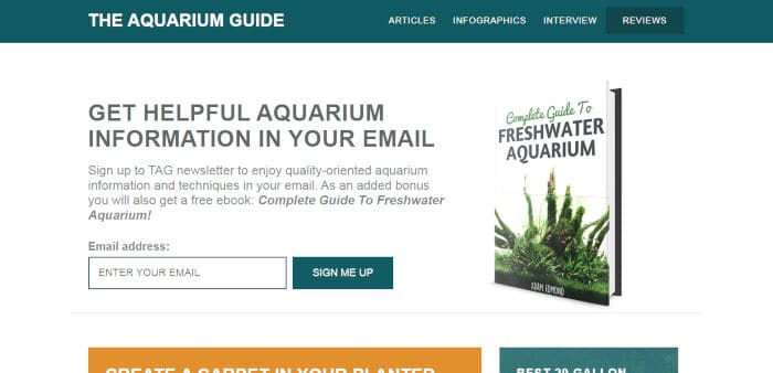 The Aquarium Guide