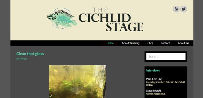 The Cichlid Stage
