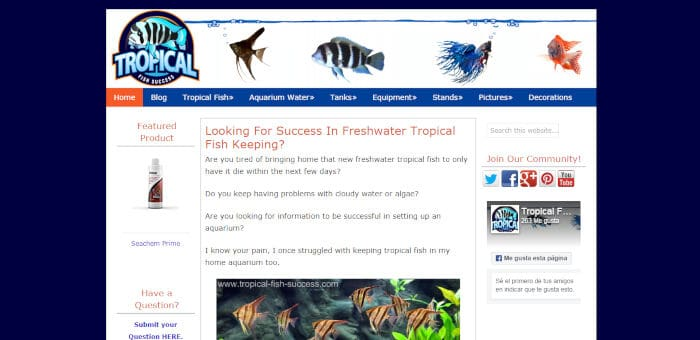 Tropical Fish Success