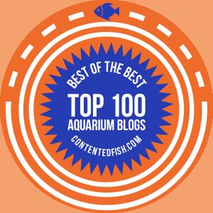 Contented Fish - Top 100 Aquariam Blogs Badge